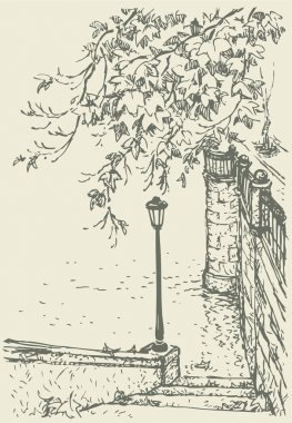 Vector landscape. Drooping branches and lantern on the old quay