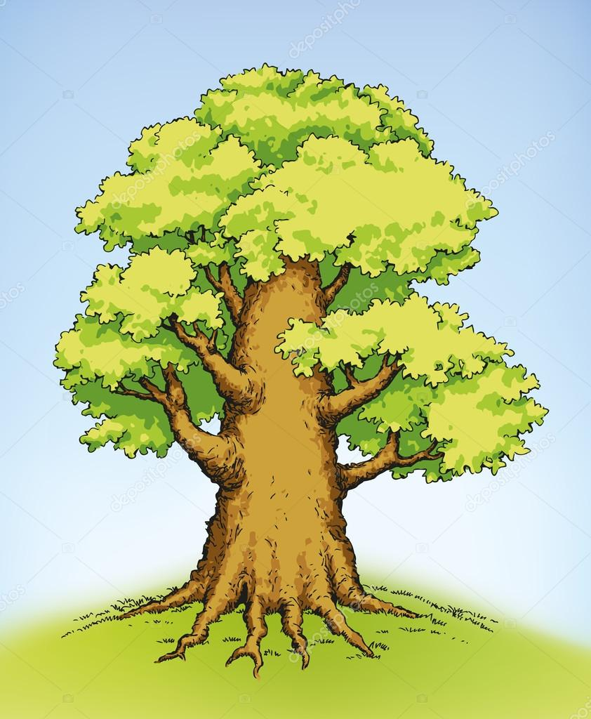 Vector drawing of a mighty tree with lush green foliage