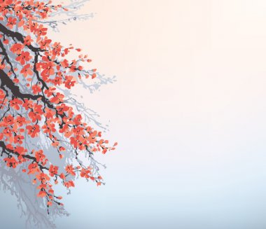 Vector background in Japanese style. Blossoming cherry branches
