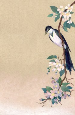 Watercolor background. Rrobin on a branch of apple blossoms