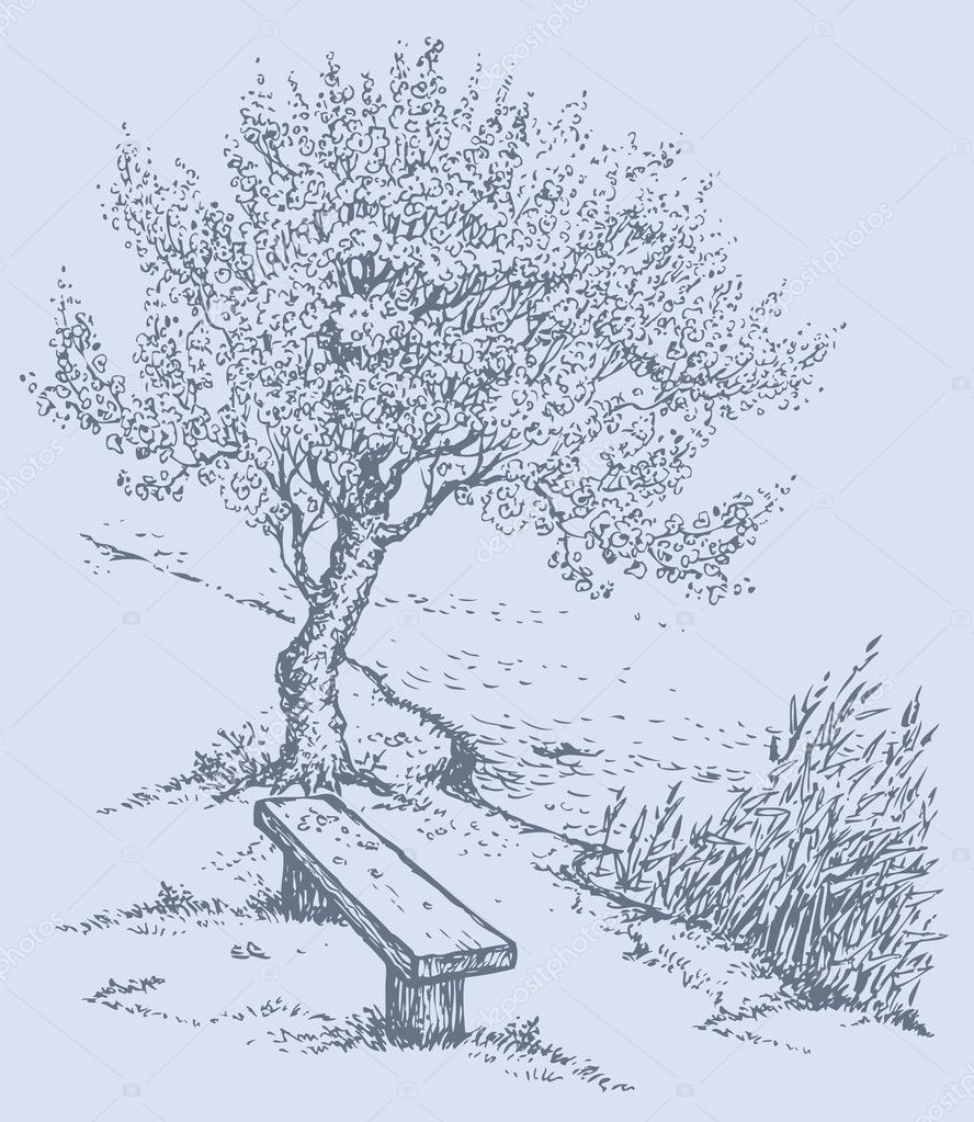 Vector landscape. Old bench by the river under tree
