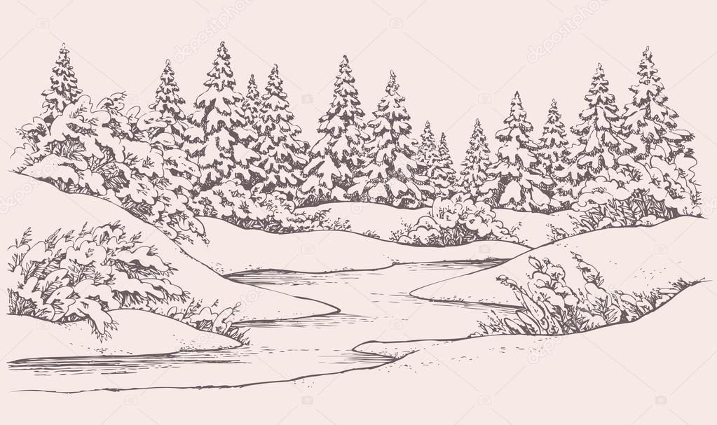 Vector winter landscape. Forest firs near frozen river