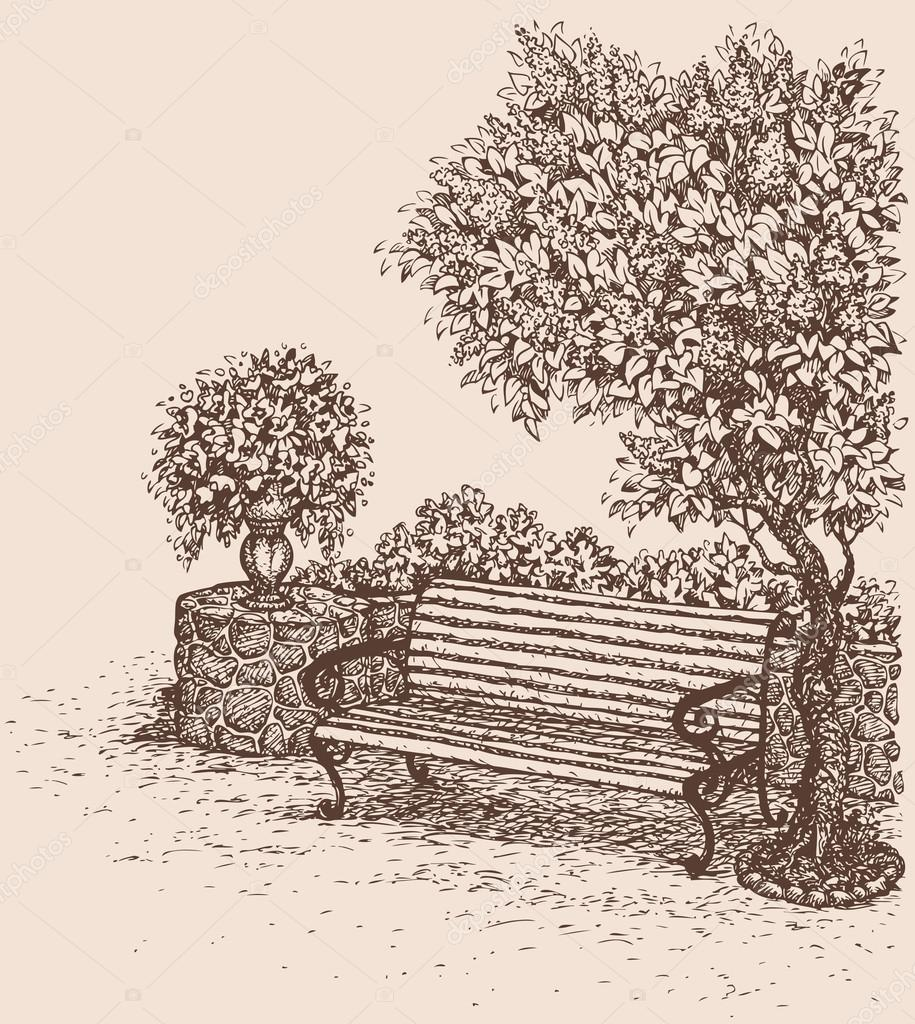 Vector drawing. Park bench under a blooming lilac bush
