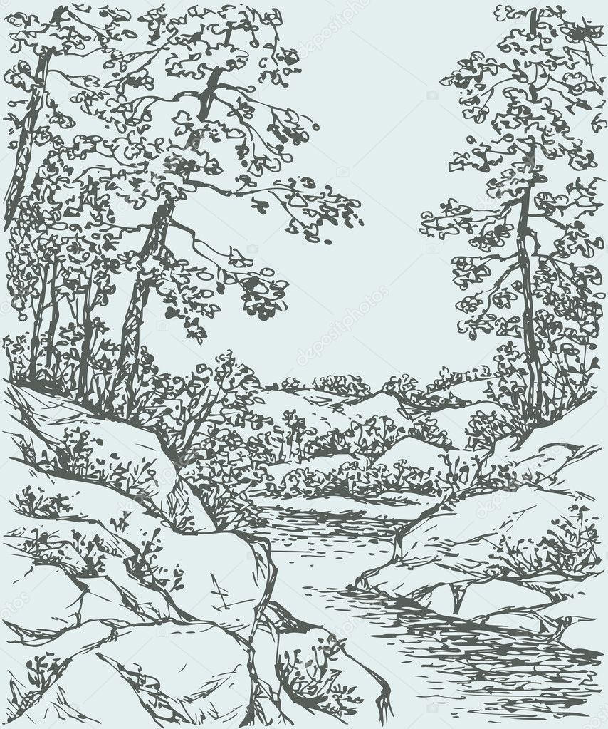Vector landscape. Trees on rocky bank of mountain stream