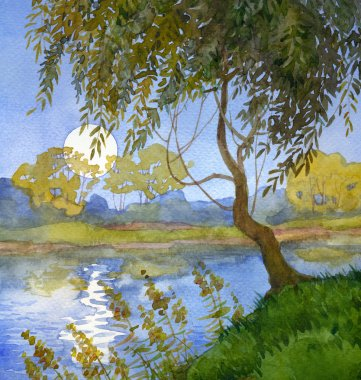 Watercolor landscape. Willow over the river
