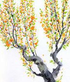 Fotografie Aquarell Frühlings-Hintergrund. Orange Blumen auf Äste
