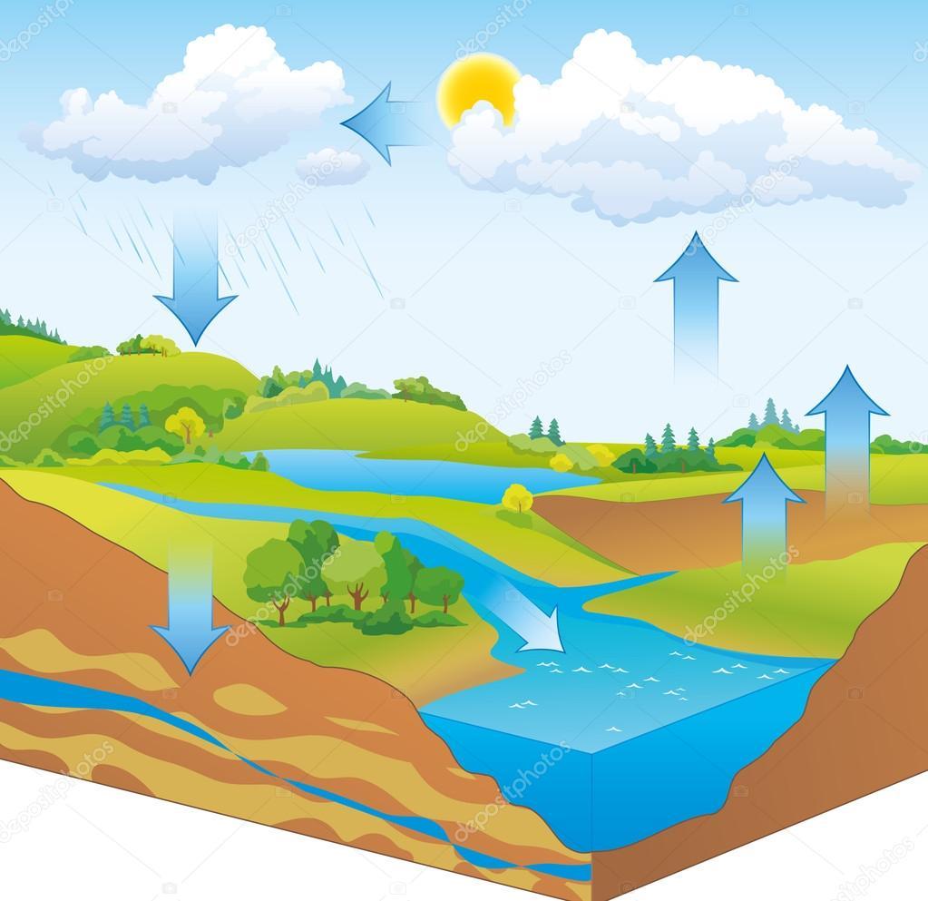 Vektor schematische Darstellung der Wasserkreislauf in der Natur ...