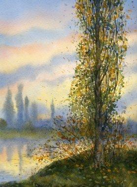 Watercolor landscape. Poplar at sunset over lake