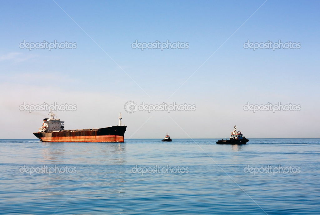 Sea bulk carrier with pilot boats