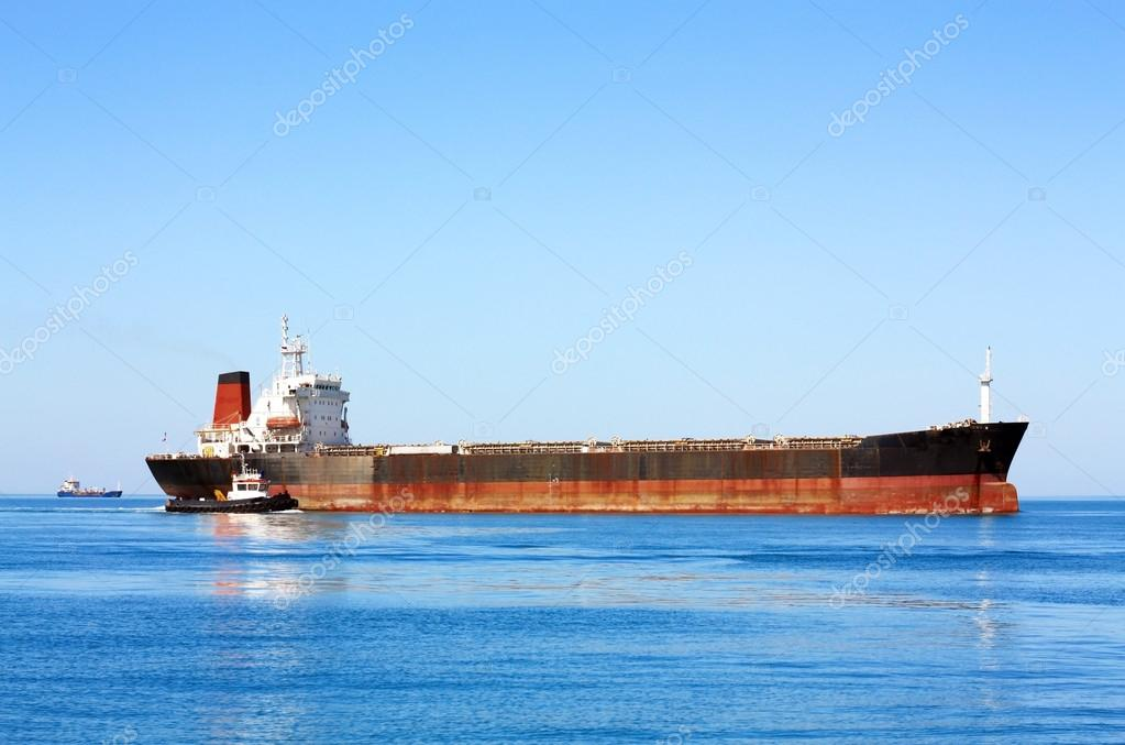 Sea bulk carrier with pilot boat