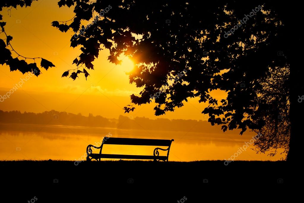 Bench in the park at sunset