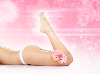 Beauty spa women legs wax, body bikini,