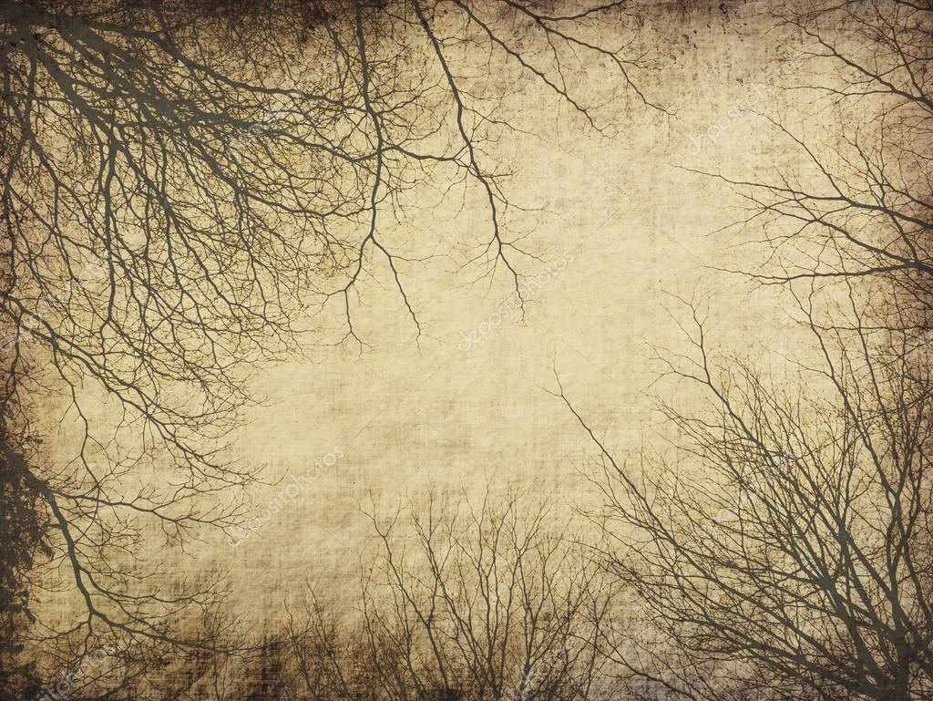 Tree with old grunge antique paper texture — Stock Photo ...