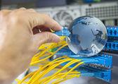 Fényképek Globe egy technológiai adatok cente szerverek és hálózati kábelek