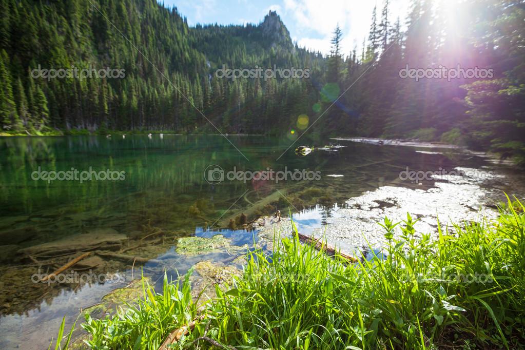 Lake in mt. Baker Recreation Area,USA stock vector