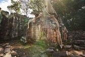 Fotografia Angkor