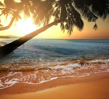 Beautiful sunset on tropical beach