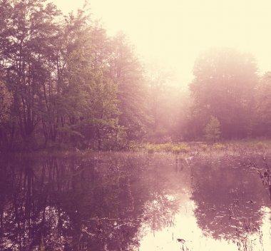 Fog in lake