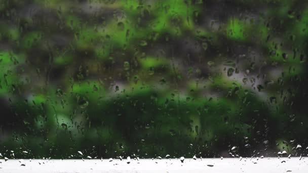 dešťové kapky na okenní. 1920 x 1080, 1080p hd záběry