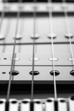 Macro of electric guitar strings