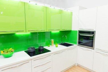 Modern green kitchen interior