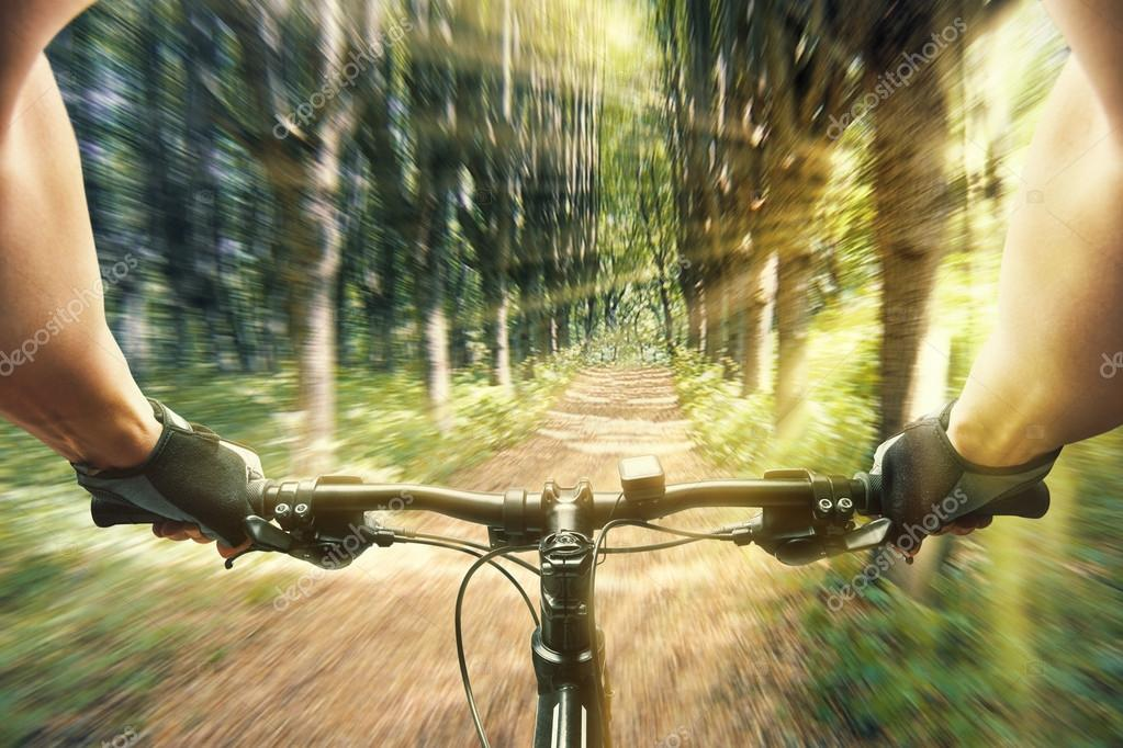 Man riding on a bicycle in forest