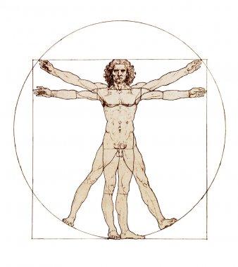 Da Vinci's Vitruvian Man isolated on white