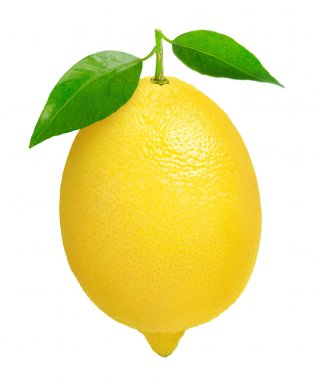 Fresh lemon isolated on white stock vector