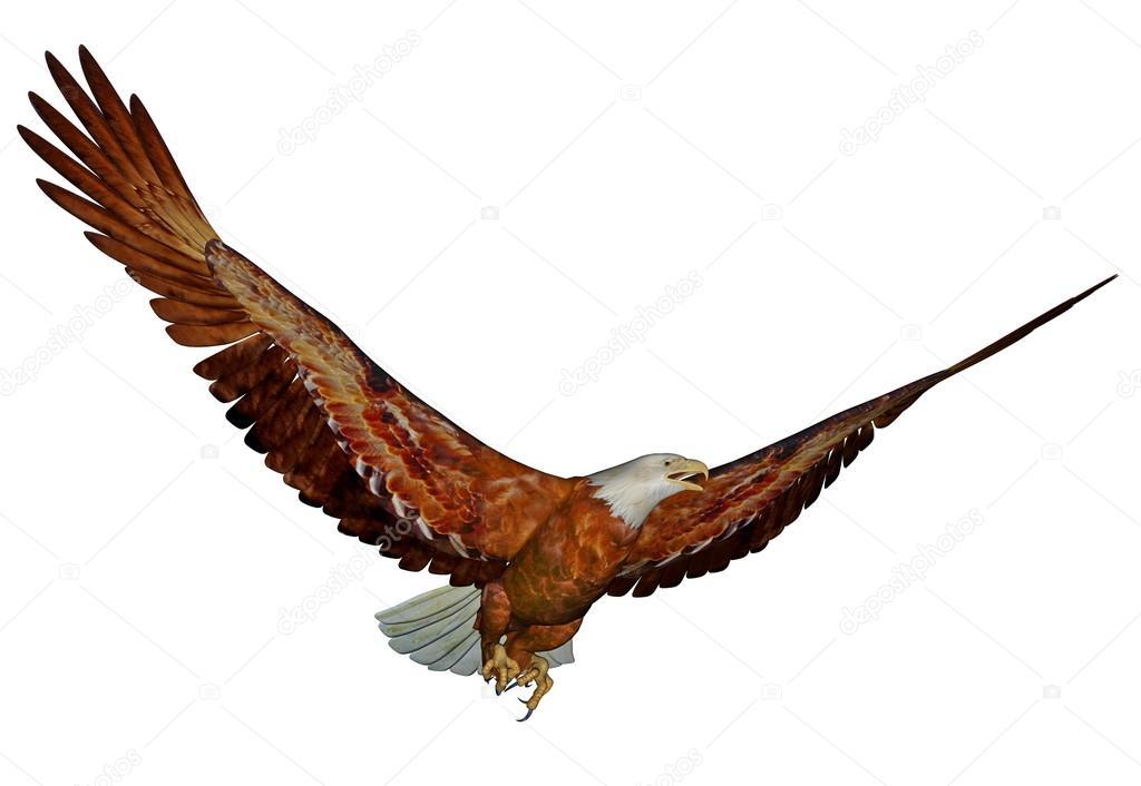 Águila calva americana - 3d render — Foto de stock © Elenarts #27757243