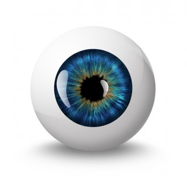Eyeball with shadow on white background stock vector