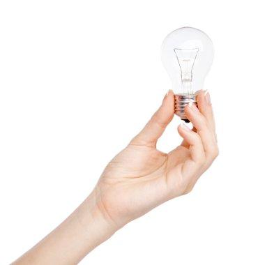 Female hand holding a light bulb