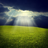 Green field with jesus light