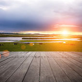 Fotografia prato verde con il lago sullo sfondo