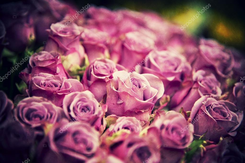 Colorful grunge roses