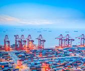 Šanghaj kontejnerového terminálu za soumraku