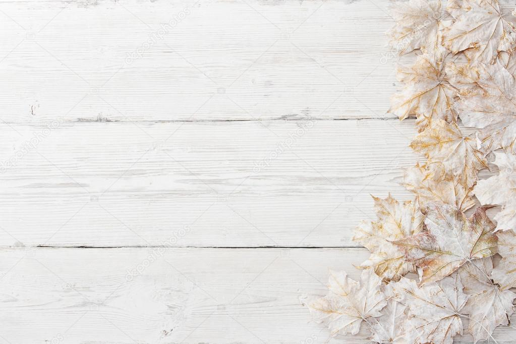 White leaves over wooden grunge background