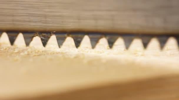 Sawing plank closeup