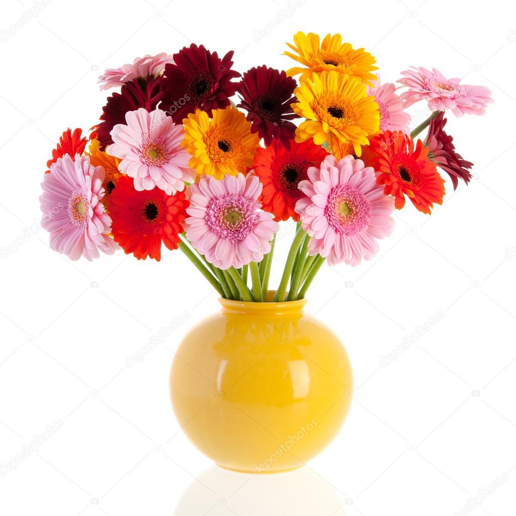 Gerber de bouquet fleurs dans un vase de verre for Bouquet de fleurs hd