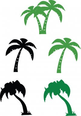 Silhouette Palm Tree  Set Collection