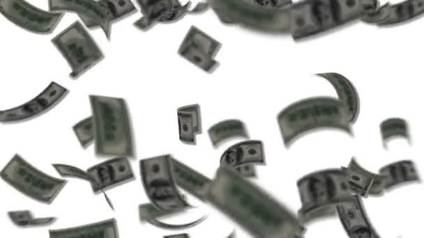 dolarové bankovky spadají jako déšť