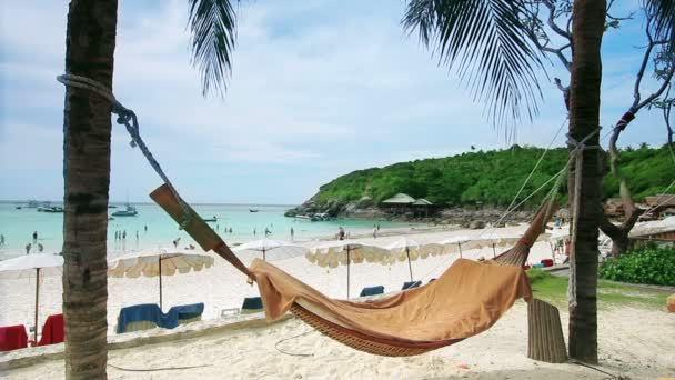 Empty hammock in an exotic beach