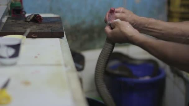 Snake blood wine shop, jakarta, indonesia