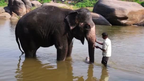 Mann wäscht seinen Elefanten im Fluss