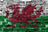 Vlajka Walesu
