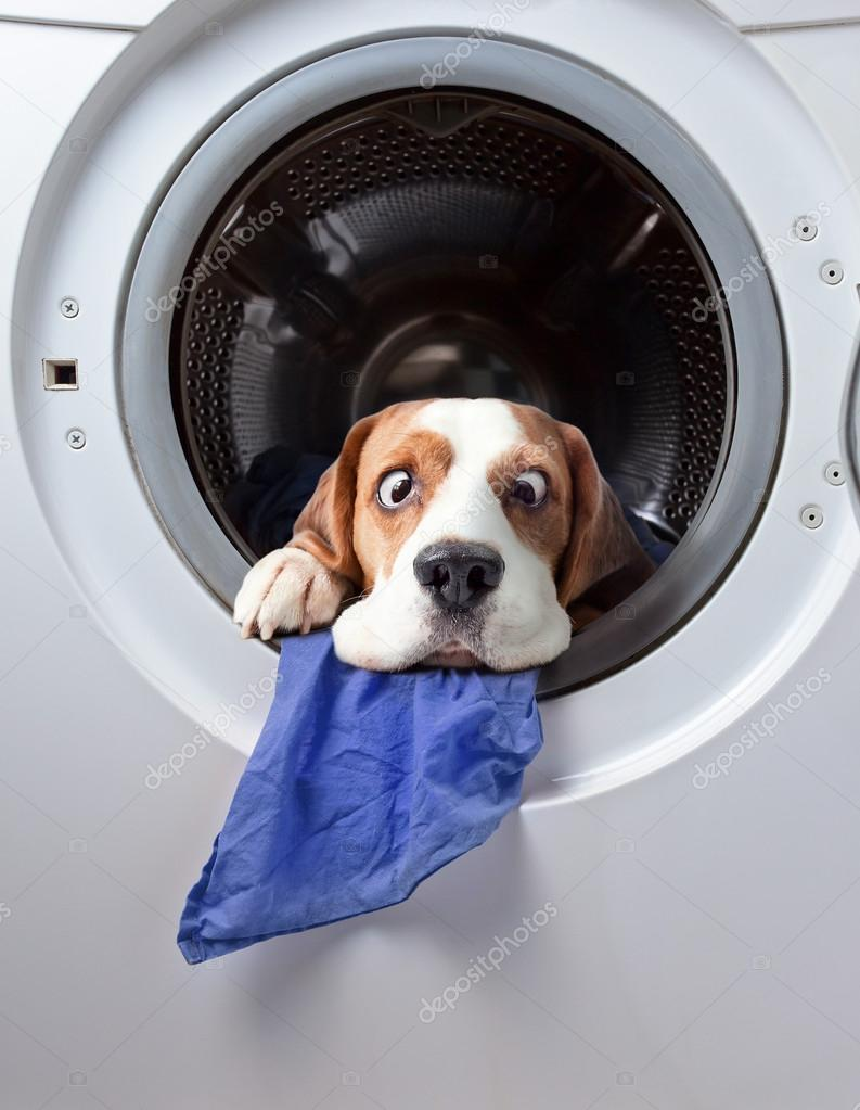 Very delicate washing