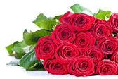 Kytice červených růží na bílém pozadí