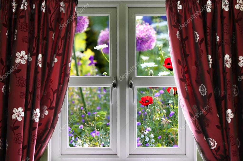 Window view onto wild summer garden