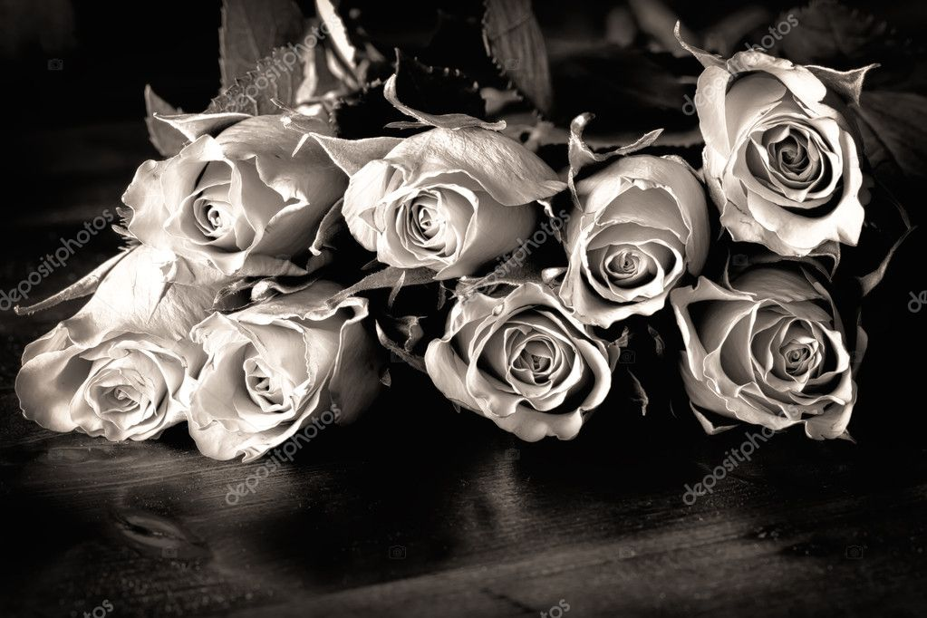 Roses on a table in black and white