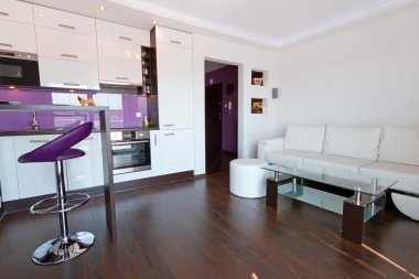 Living room interior with kitchen