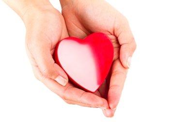 Heart shape in hands